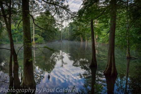 Early Morning on the Mamuelle River near Petit Jean Mountain