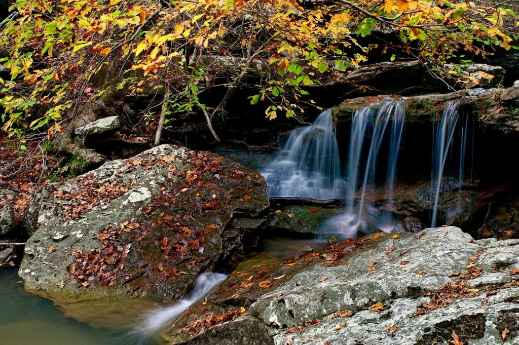 Fall Scene along Falling Water Creek in Newton County