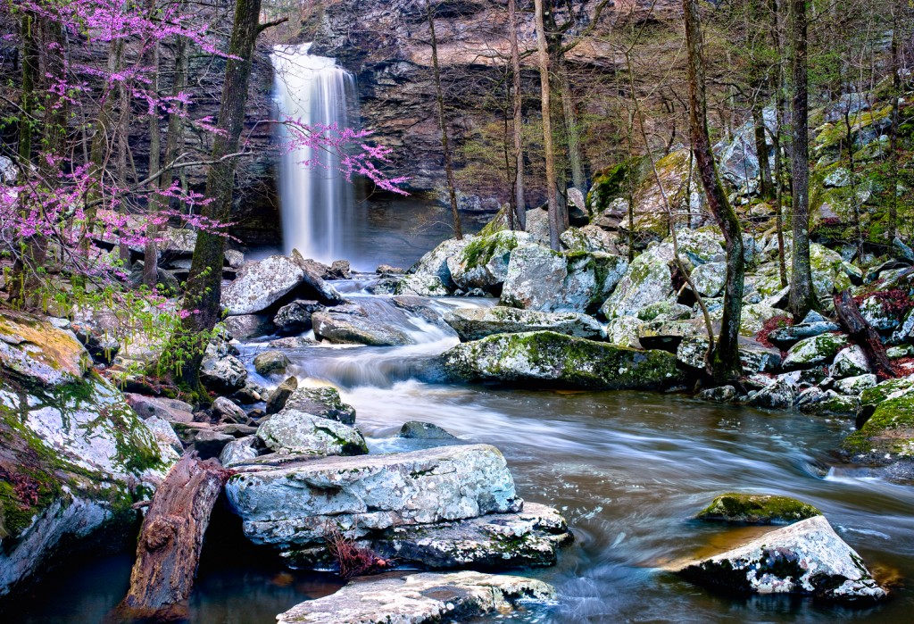 Springtime at Cedar Falls on Petit Jean Mountain