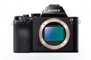 Sony A7r 36MP sensor view