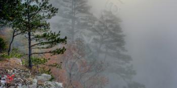 Buffalo River Fog