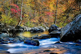 Richland Creek in Arkansas